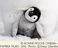 <先着10組限定>映画「皇帝ペンギン ただいま」公開記念 鑑賞券付ファミリープラン・1キッズフリー